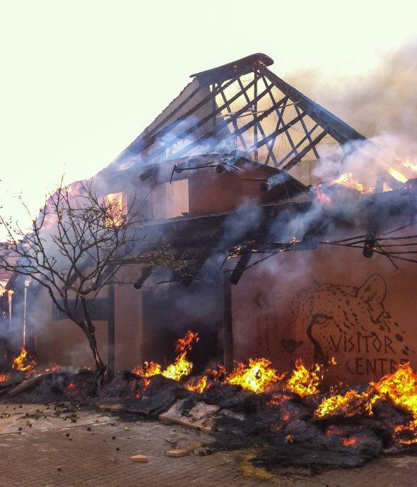 Incendio al centro dei Ghepardi