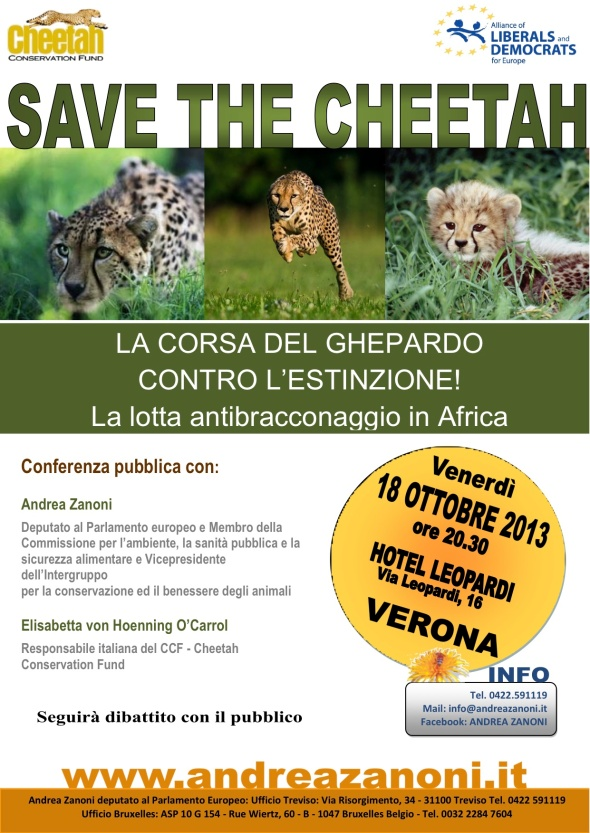 We are together...to save the cheetah!