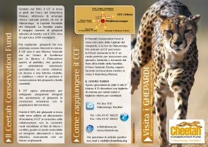 CCF folder ITA