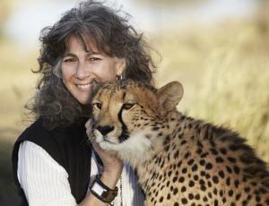 La dr. Laurie Marker è la maggiore esperta di ghepardi nel mondo.