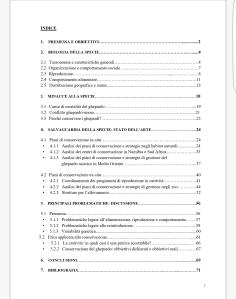 Indice della tesi E.Fimiani