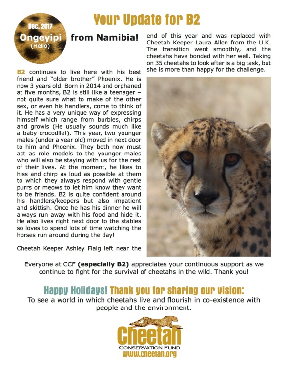 CheetahUpdates_Dec_2017_B2